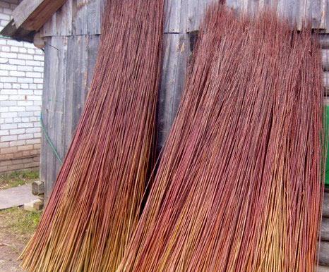 лоза для плетения забора