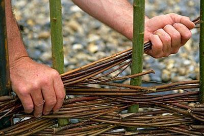 плетение забора из лозы