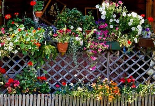 украшение забора цветами