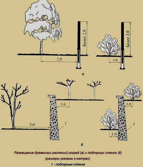 удобрение для посадки деревьев и кустов ови 0,550 кг.