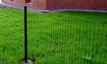ограда из рулонной сварной сетки