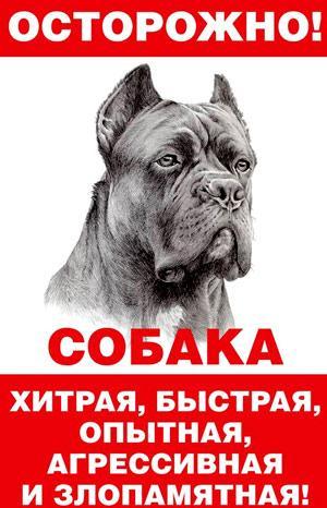 реально злая собака