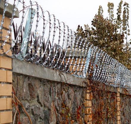 колючая проволока забор