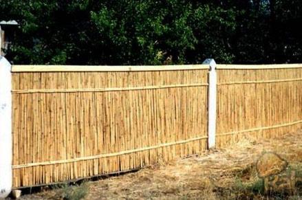 ограда из камыша