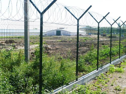 забор колючая проволока