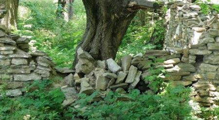 Процесс демонтажа старого деревянного забора
